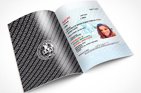 International driver's license, international driver license
